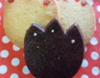 チューリップクッキー(ココア、プレーン)